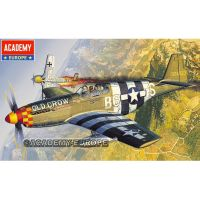 Academy 12464 P-51 Mustang