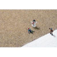 Auhagen 75609 Fű szóróanyag, sztatikus, 2,5 mm, téli színezés, 75 g