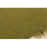 Auhagen 75614 Fű szóróanyag, sztatikus, 4,5 mm, olajzöld, 50 g