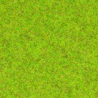 Noch 08300 Fű szóróanyag tavaszi színezés, 2,5 mm, 20 g