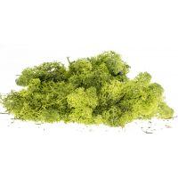 Izlandi moszat, fenyőzöld, 80 g