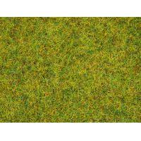 Noch 08151 Fű szóróanyag, nyári fű, 2,5 mm, 120 g