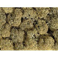 Noch 08600 Izlandi moszat, kőszürke, 35 g