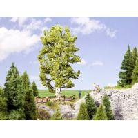 Noch 21641 Duplatörzsű nyírfa, 19 cm