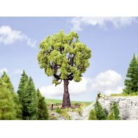 Noch 21761 Tölgyfa, 19 cm