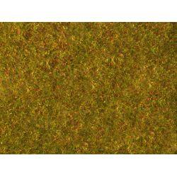 Noch 07290 Téphető virágos aljnövényzet, sárgászöld