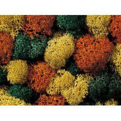 Noch 08630 Izlandi moszat, vegyes őszi színeszés, 35 g