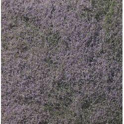 Woodland F177Aljnövényzet, lila virág, finom szivacsos