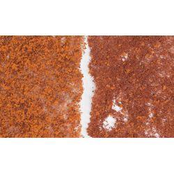 WoodlandF56Lombozat, későőszi színezés(szivacsos)
